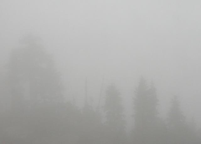 this fog